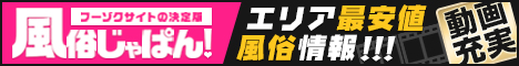 新宿/歌舞伎町デリヘル人気店多数掲載!風俗じゃぱん